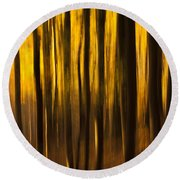 Golden Blur Round Beach Towel by Anne Gilbert