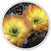 Golden Cactus Flowers  Round Beach Towel