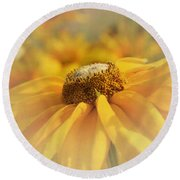 Golden Crown - Rudbeckia Flower Round Beach Towel