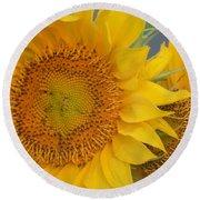 Golden Duo - Sunflowers Round Beach Towel