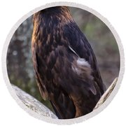 Golden Eagle 2 Round Beach Towel