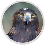 Golden Eagle Lookin' At You Round Beach Towel