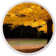 Golden Glow Of Autumn Fall Colors Round Beach Towel