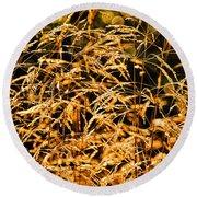 Golden Grasses Round Beach Towel