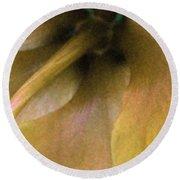 Golden Hibiscus 2616 Round Beach Towel