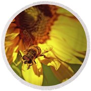Golden Hoverfly 2 Round Beach Towel