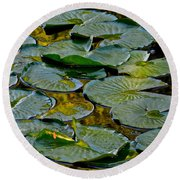 Golden Lilly Pads Round Beach Towel