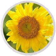Golden Moment - Sunflower Round Beach Towel