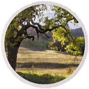 Golden Oaks Round Beach Towel