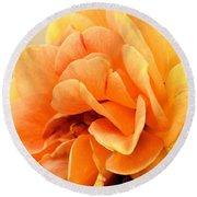 Golden Peach Rose Round Beach Towel