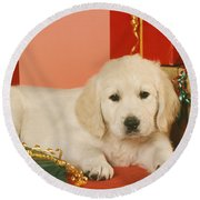 Golden Retriever Amongst Presents Round Beach Towel