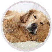 Golden Retriever And Orange Cat Round Beach Towel