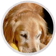 Golden Retriever Dog On The Yellow Blanket Round Beach Towel