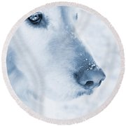 Golden Retriever Dog Snowflakes On My Nose Round Beach Towel