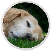 Golden Retriever Dog Sweet Dreams Round Beach Towel