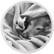 Golden Retriever Dog Under The Blanket Round Beach Towel