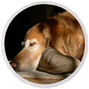 Golden Retriever Dog With Master's Slipper Round Beach Towel by Jennie Marie Schell