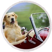 Golden Retriever In Car Round Beach Towel
