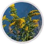 Golden Rods At Northside Park Round Beach Towel