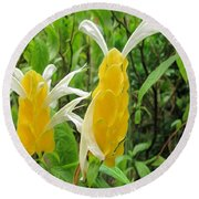 Golden Shrimp Plant Or Lollipop Plant Round Beach Towel