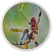 Golden Silk Orb With Blue Dragonfly Round Beach Towel