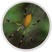 Golden Silk Spider 10 Round Beach Towel
