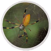 Golden Silk Spider 9  Round Beach Towel