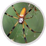 Golden Silk Spider Capturing A Stinkbug Round Beach Towel