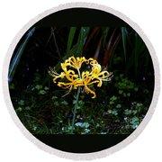 Golden Spider Lily Round Beach Towel