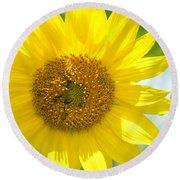 Golden Sunflower - 2013 Round Beach Towel