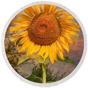 Golden Sunflower Round Beach Towel by Adrian Evans