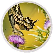 Golden Swallowtail Round Beach Towel