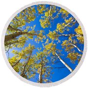 Golden View Looking Up Round Beach Towel