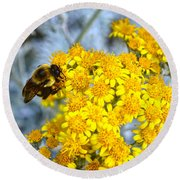 Golden Yarrow And Visitor Round Beach Towel