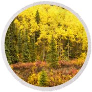 Golden Yellow Fall Boreal Forest In Yukon Canada Round Beach Towel