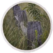 Goldenrod By The Fence Round Beach Towel