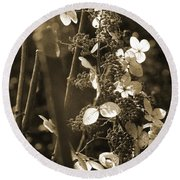 Goldenrod In Sepia Round Beach Towel