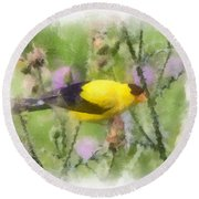 Goldfinch #3 By Kerri Farley Round Beach Towel