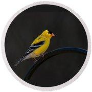 Goldfinch 3 Round Beach Towel