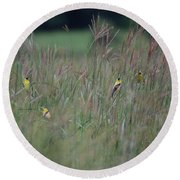 Goldfinch Party Round Beach Towel