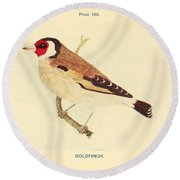 Goldfinch Round Beach Towel by Philip Ralley
