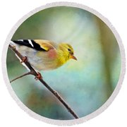 Goldfinch With Rosy Shoulder - Digital Paint IIi Round Beach Towel