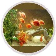 Goldfish At The Chinese Restaurant  Round Beach Towel
