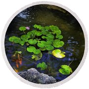 Goldfish With Lily Pads Round Beach Towel