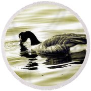 Goose Reflecting In The Water Round Beach Towel