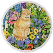 Gordon S Cat Round Beach Towel by Hilary Jones