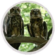 Gorgeous Great Horned Owls Round Beach Towel