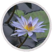 Gorgeous Pale Lavender Water Lily Round Beach Towel