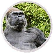 Gorilla Look Round Beach Towel