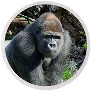 Gorilla135 Round Beach Towel